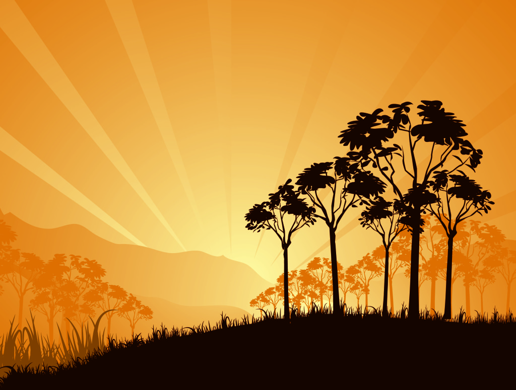 sunrise-in-savanna